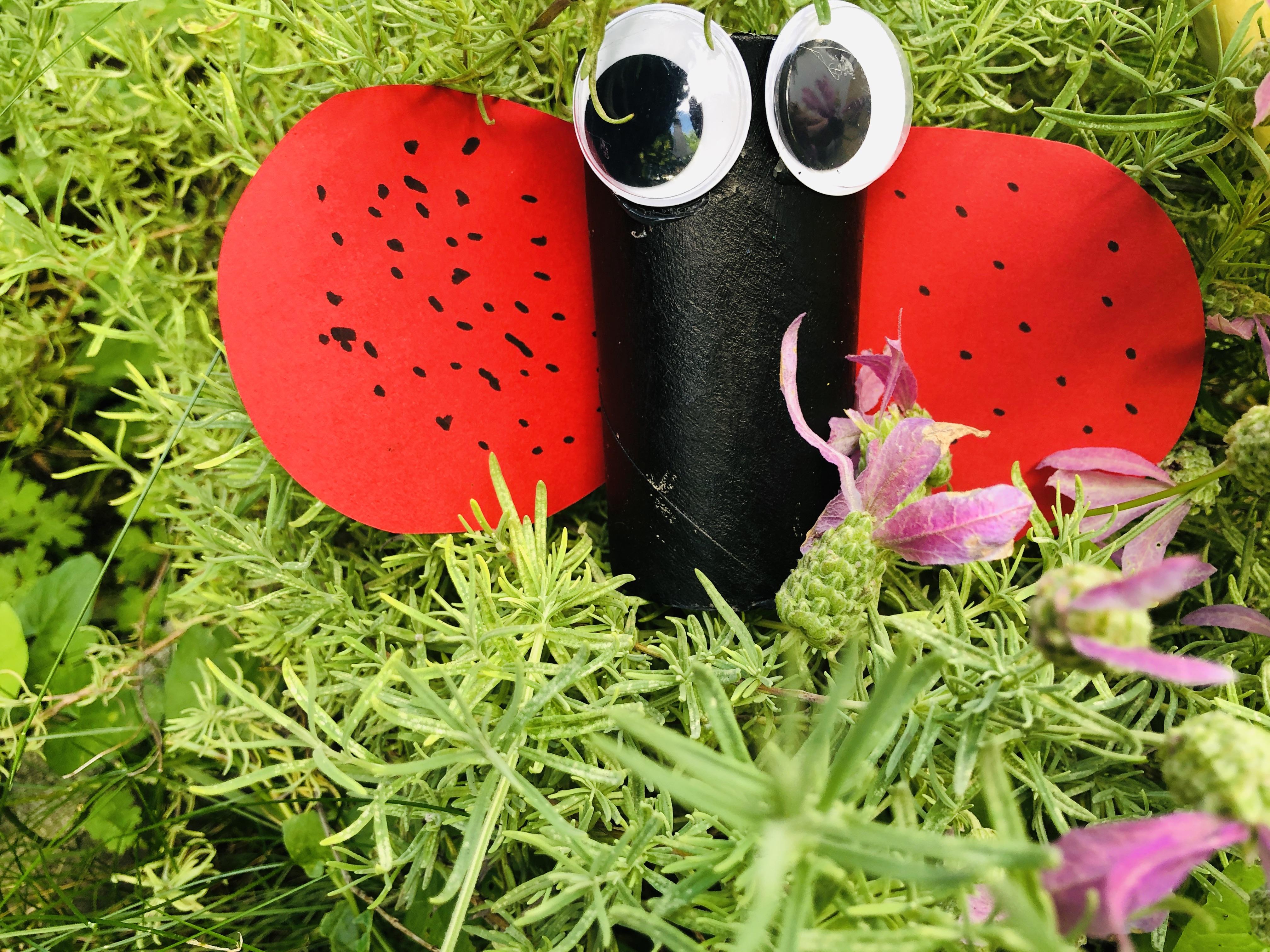 paper roll ladybug on a flower