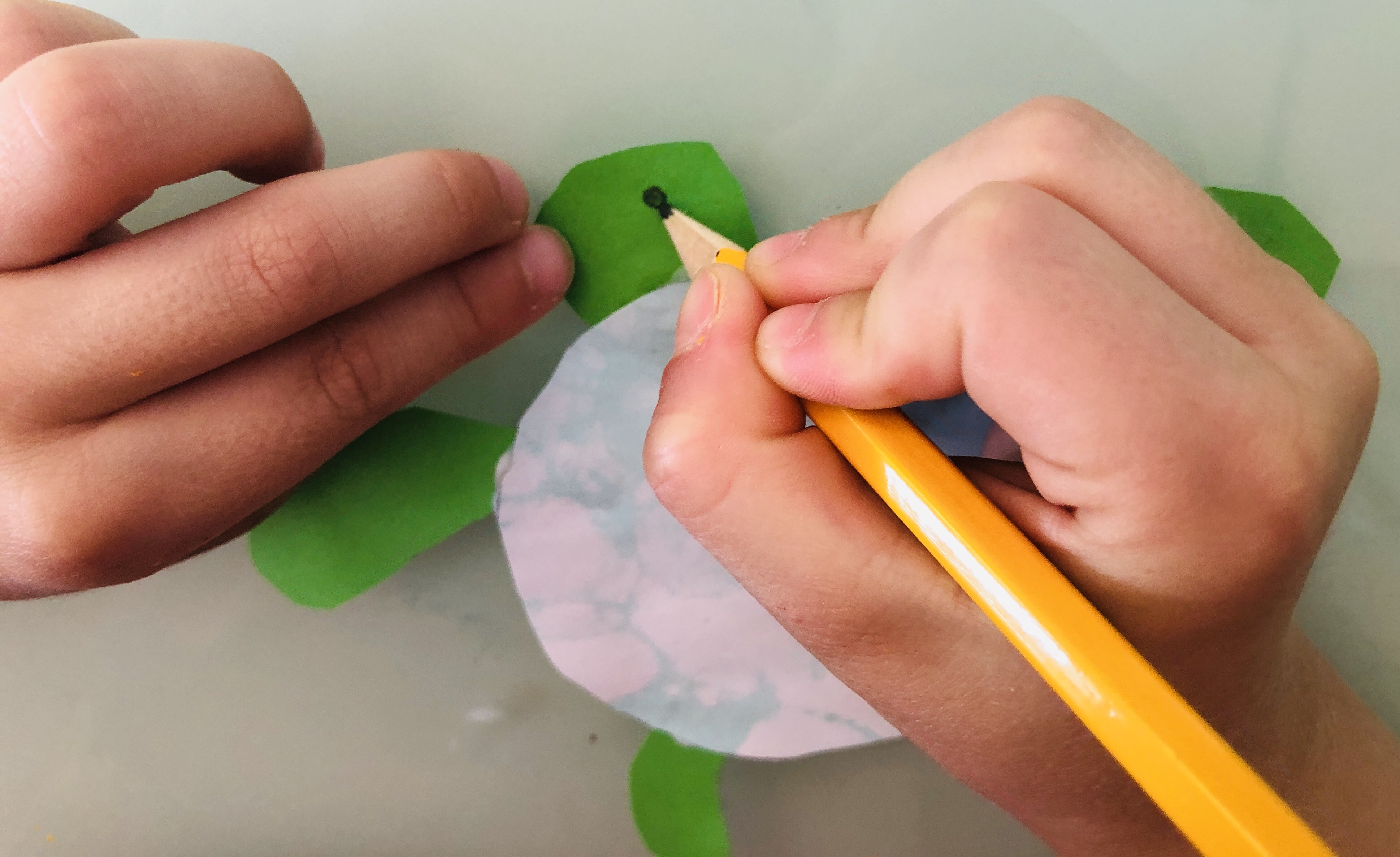 kid drawing eyes on a turtle