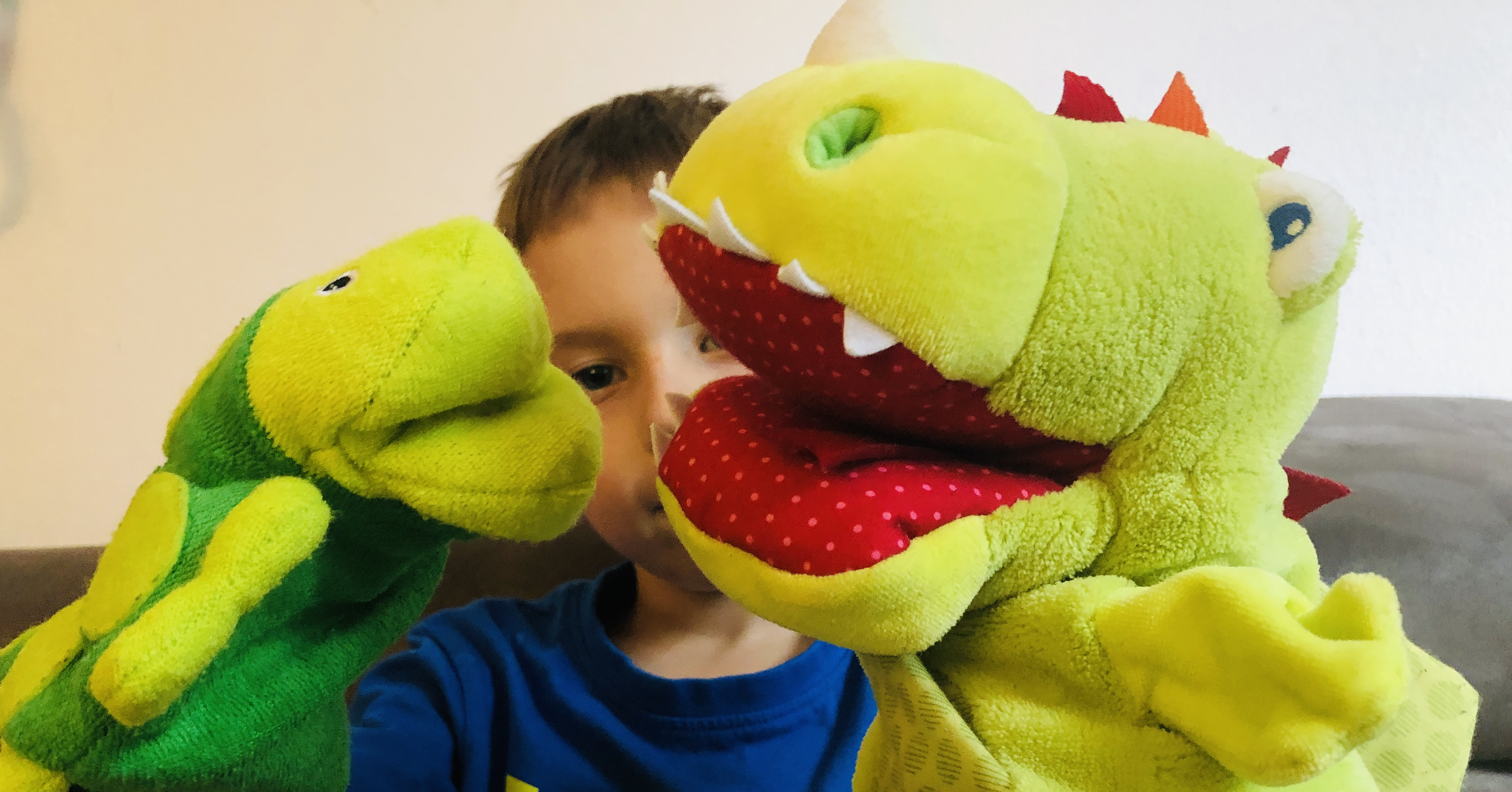 hand puppets dragon and turtle