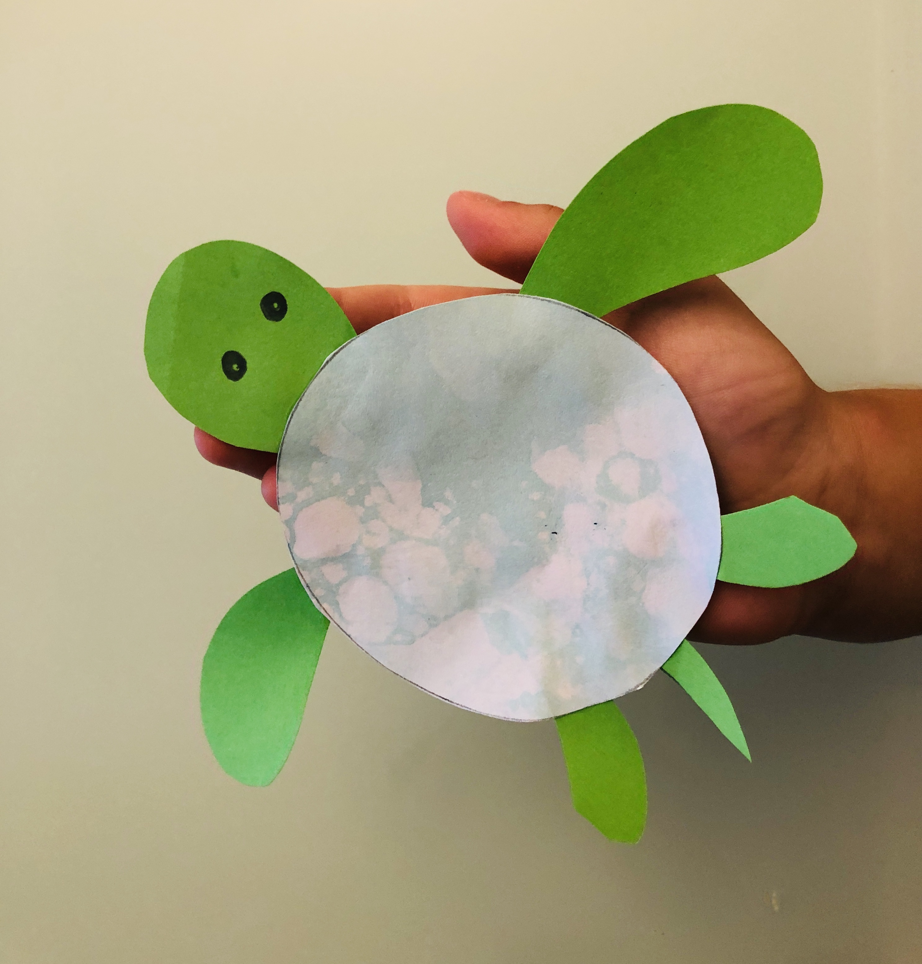 kid holding a paper turtle