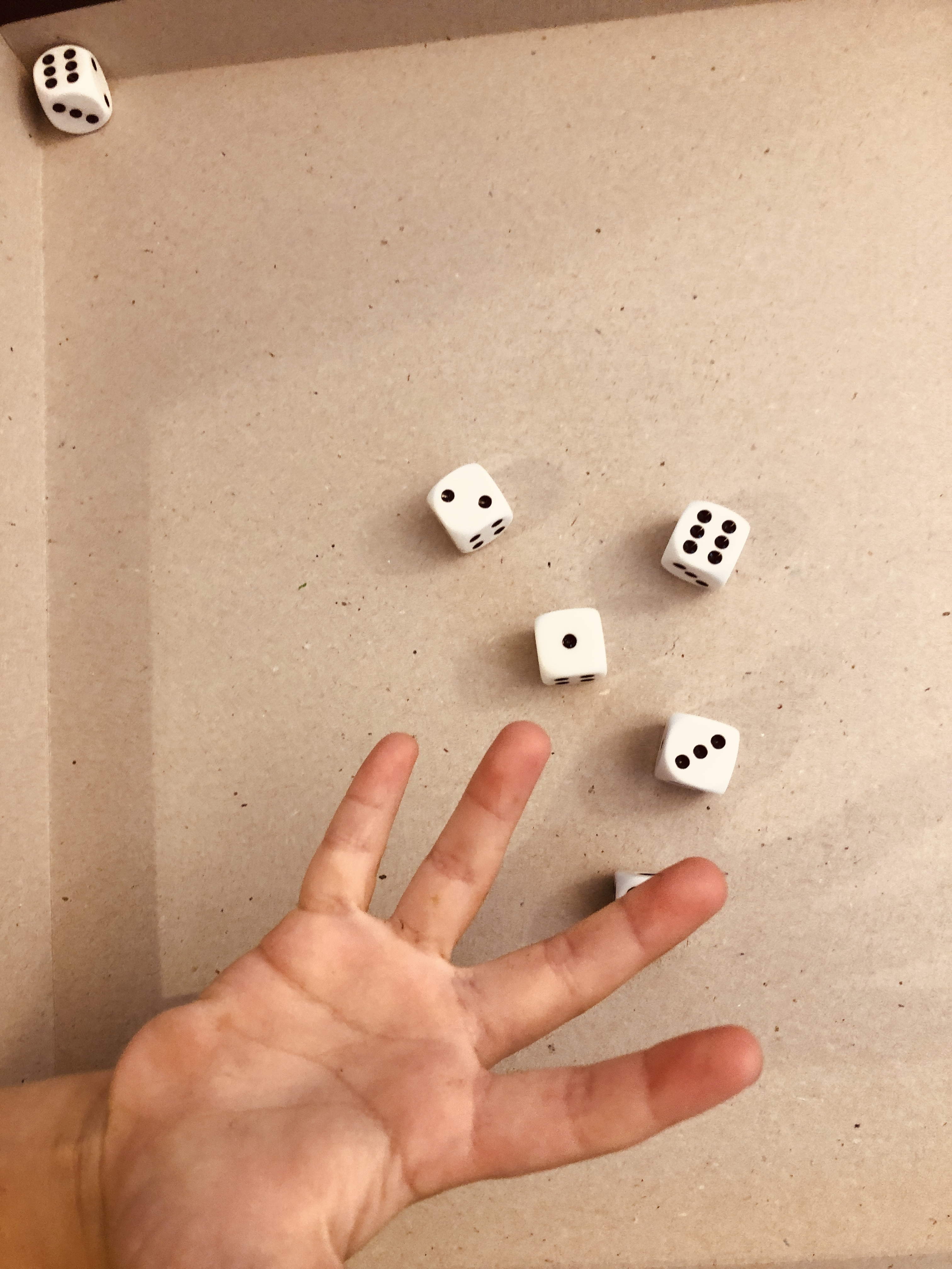 rolling dice for the dice bingo game