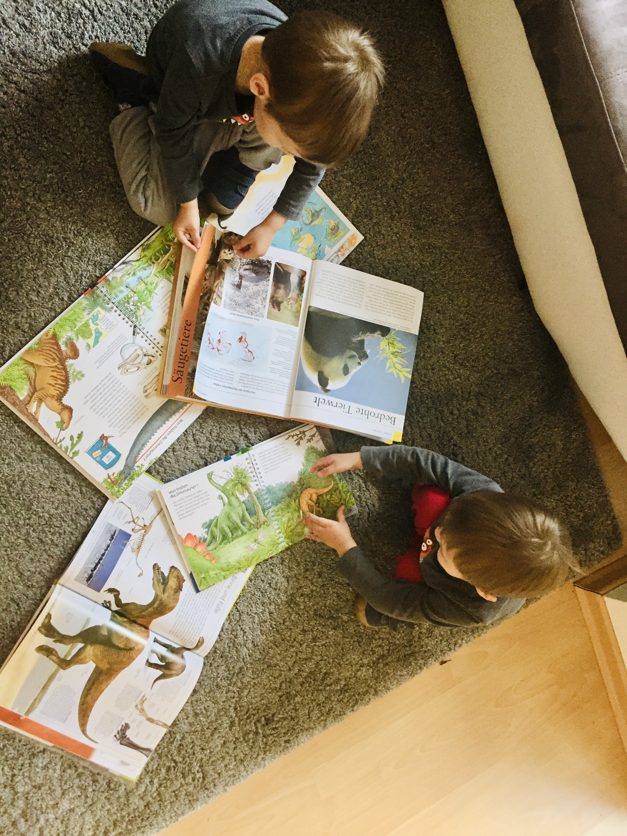 boys reading books about dinosaurs