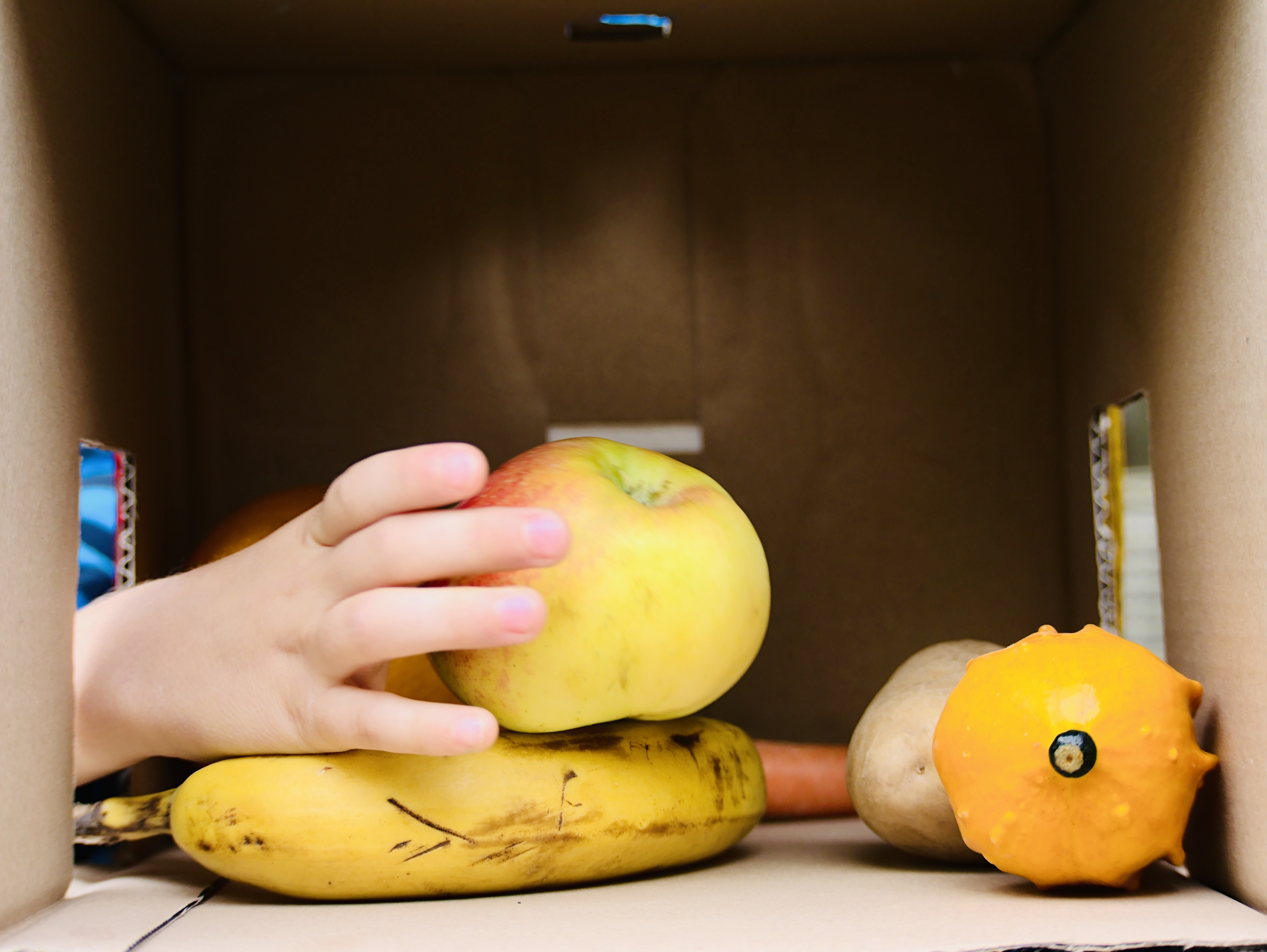 fruit and vegetable in the language box