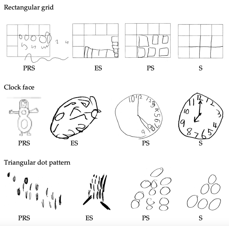 representations of structural responses